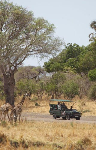 Katavi Wildlife Camp Game Drive