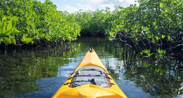 Kayaking In The Mangroves At Diamonds Mequfi Beach Resort In Pemba