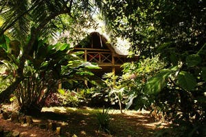 Kibale  Forest  Camp In The Trees