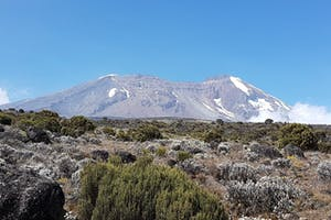 Kilimanjaro Alpine Terrain