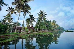 Kottayam  Palms In The  Kerala Backwaters