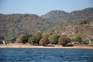 Lake Malawi Shores