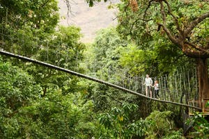 Lake Manyara Treetop Canopy Walkway