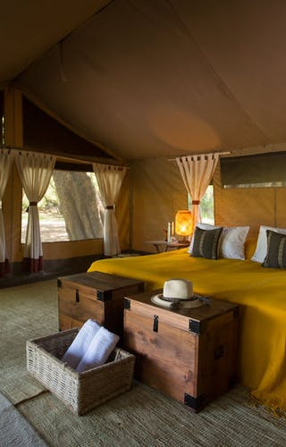 Lales  Camp  Bedroom  Yellow