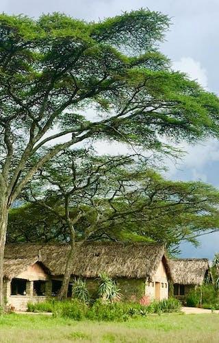 Landscape With Ndutu Safari Lodge