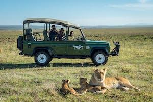 Little  Governors  Camp Lion Safari