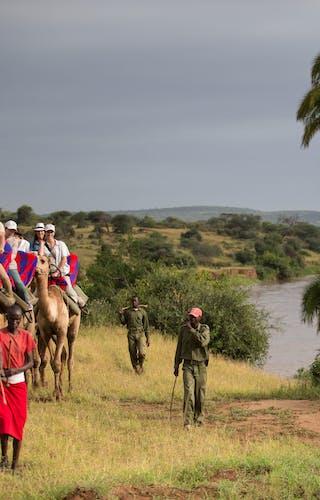 Loisaba Camel Trekking