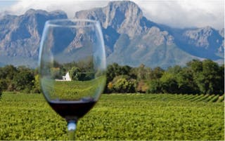 Luxury Food Wine Tour Cape Town Winelands And Safari 2