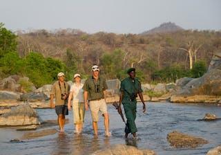 Majete Walking Safari