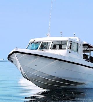 Male Speedboat