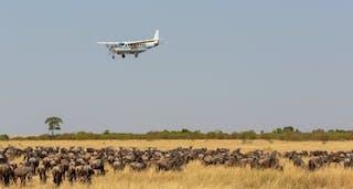 Mara Air Safari