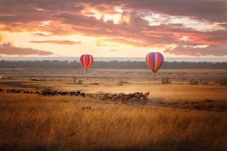 Masai Mara Hot Air Ballooning Copy
