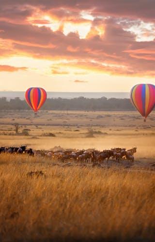 Masai Mara Hot Air Ballooning