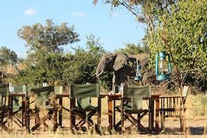 Mdonya  Old  River  Camp  Dining