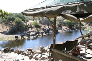 Meno A Kwena River Views