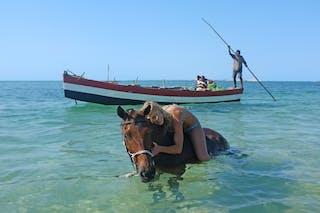 Mozambique Horse Safaris Fun In The Sea