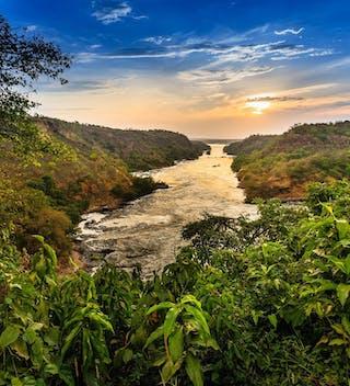 Murchison Falls In Uganda On The River Nile Copy