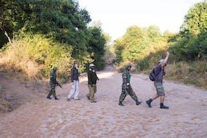 Mvuu Lodge Rhino Tracking Experience