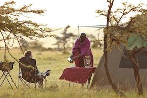 Naboisho Elephant Sighting