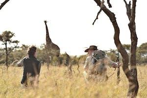 Naboisho Spotting A Giraffe On Walking Safari