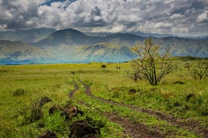Nechisar National Park Near Arba Minch In Ethiopia