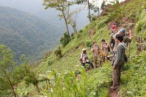 Nkuringo  Bwindi  Gorilla  Lodge  Hiking