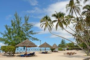 Ocean  Paradise Lounger Area