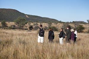 Okonjima Guided Bush Walk  Margo