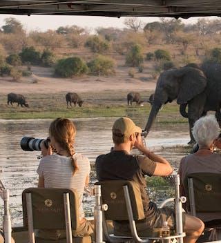 Pangolin Photo Safaris – Photo Boat