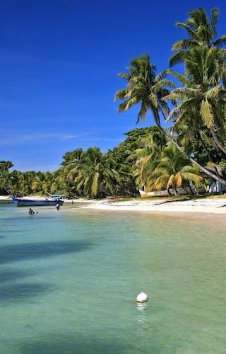 Princesse  Bora  Lodge Beach