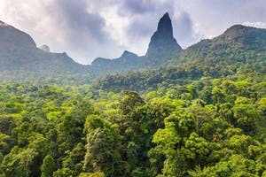 Rainforest And Peak  Sao  Tome  Principe