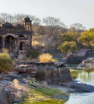 Ranthambore National Park Ruins