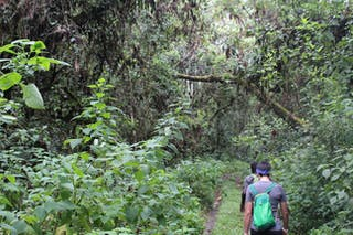 Route up to Ngozi Crater Lake