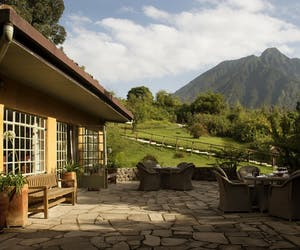 Sabyino Silverback Lodge Cottage