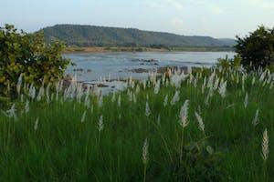 Sarai At  Toria  River  View