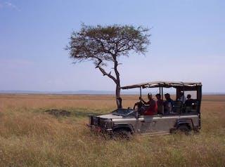 Saruni Wild Safari Drive