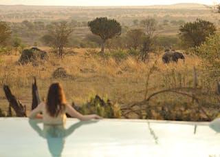 Sayari Camp Pool Elephants