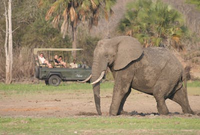 Siwandu Safari