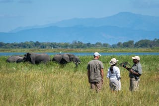 Stanley Guiding In Liwonde National Park