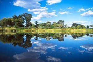 Sunway  Botswana  Okavango  Delta Reflections