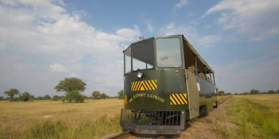 The Elephant Express In Hwange National Park