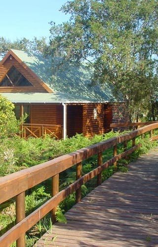 The Fernery Chalet Walkway