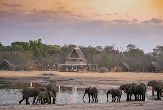 The Hide A Frame And Elephants