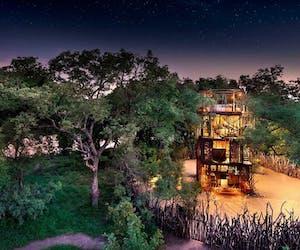 The Ngala Treehouse 5