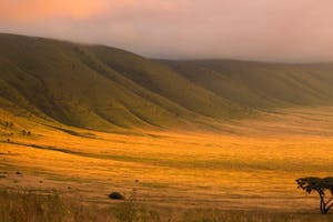 The Ngorongoro Crater Entamanu