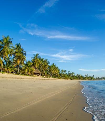 The  Tides  Lodge  Beach