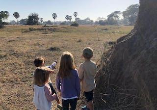 The Children Stalking A Warthog At Kuthengo Camp Liwonde