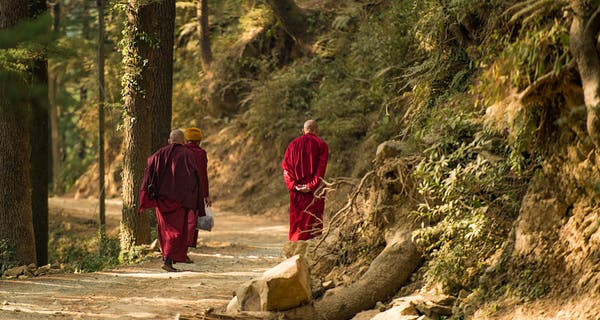 Tibetan Monks Walking In Dharamsala