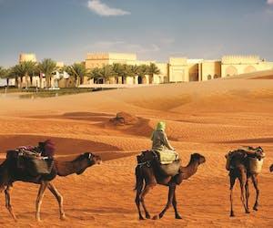 Tilal Liwa Exterior With Camels