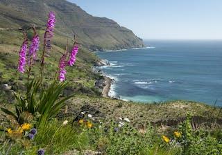 Tintswalo Atlantic View